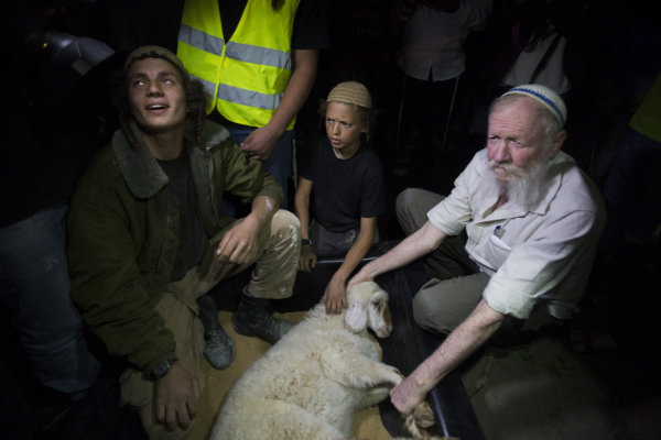jews arrested