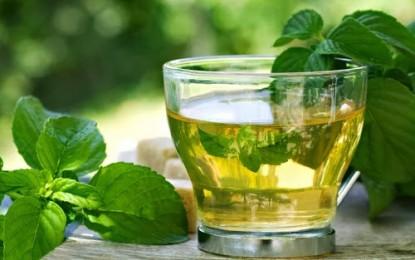 Mint tea for pain