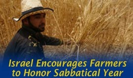 Israel Encourages Farmers to Honor Biblical Sabbatical Year