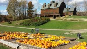 New York Farmers - liberty ridge farm