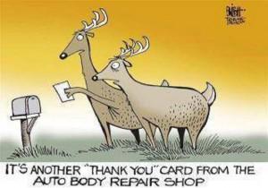 deer thank you