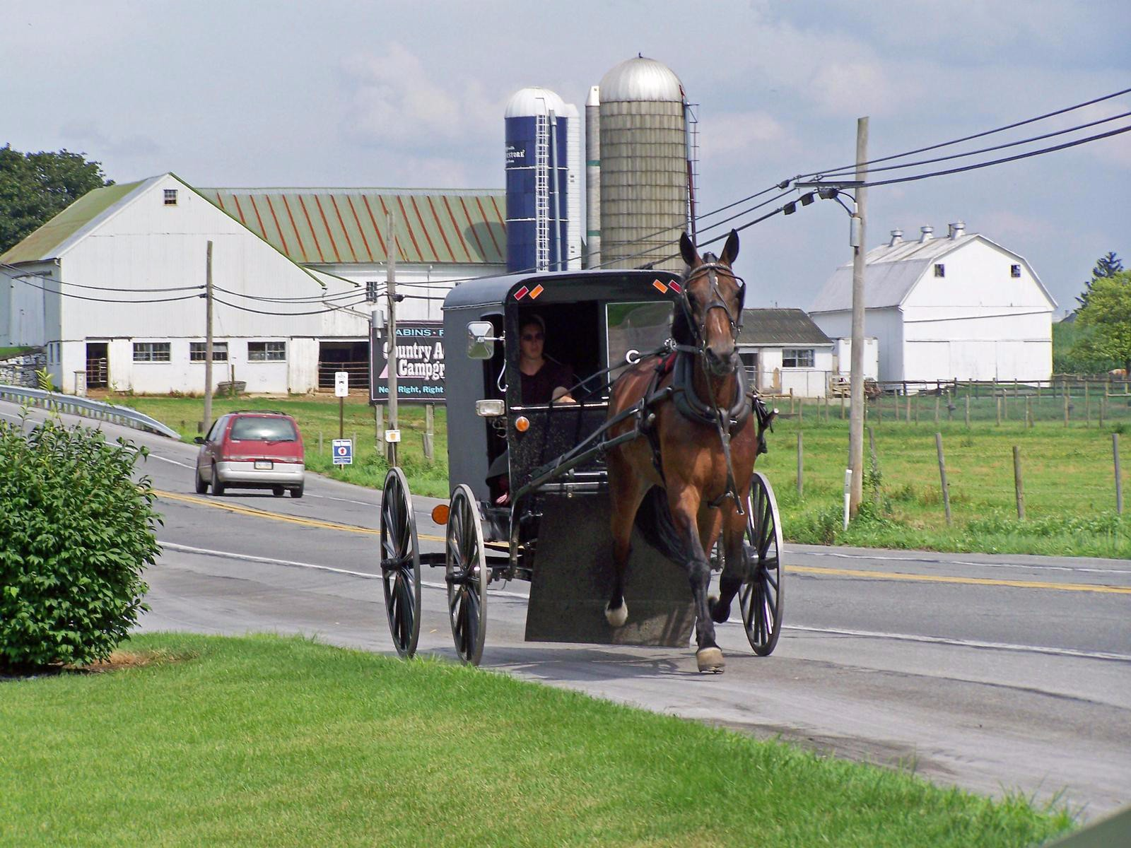 the amish The amish are an intriguing, somewhat mysterious people in this electronic-crazy age, can they really avoid using electricity learn about the amish.