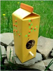 bird-feeders-for-kids