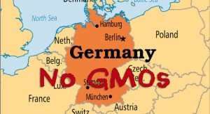 Germany seeks ban on GMOs