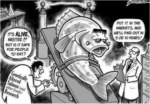 FDA Aproves - Frankenfish-Cartoon
