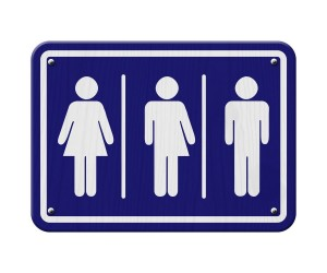 How the transgender directive