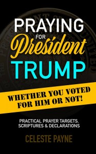 Book Urges us to Pray - Praying for President Trump
