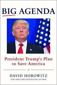 David Horowitz - Big Agenda