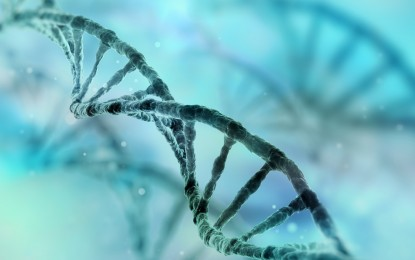 'Jumping genes' further debunk evolution