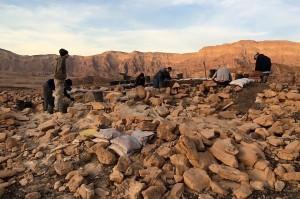 Ancient dung testifies