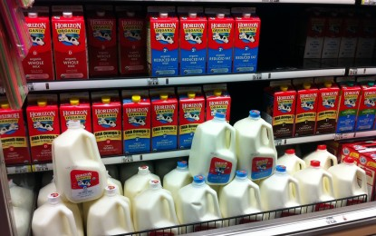 Organic milk deception: Millions of cartons contain unwanted factory-brewed oil