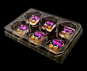 Synthetic human embryos