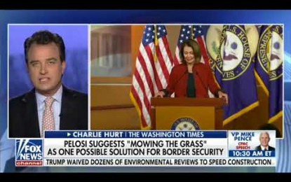 No Wall Needed! Pelosi Suggests 'Mowing The Grass' At Border