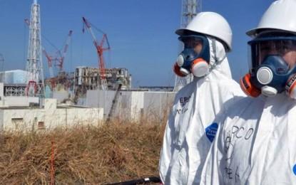Fukushima Forever