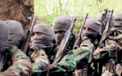 """Al-Shabaab call Muslims to rejoice in """"punishment"""" of Covid-19 infected non-Muslims, as virus survey highlights"""