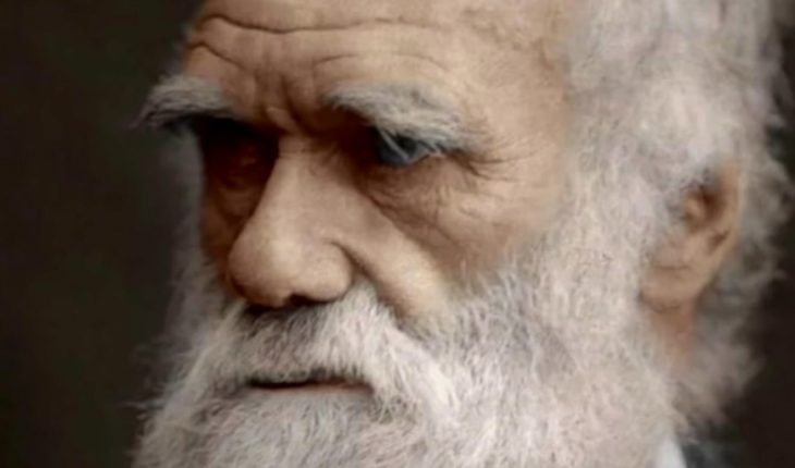 """Why hasn't Charles Darwin been """"canceled?"""""""