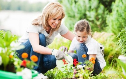 How the simple act of caring for plants rooted me more deeply in God