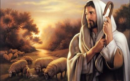 Towards 2015: Jesus Christ, Eternal King