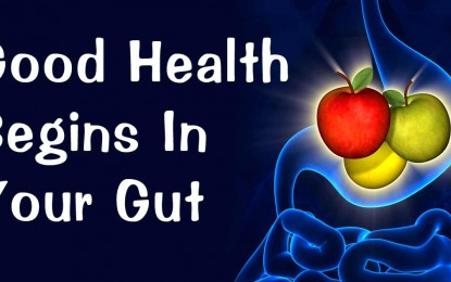 Modern diet destroys gut health and causes irreversible damage for generations