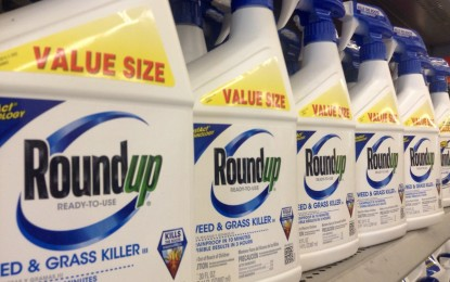 FDA found glyphosate in nearly all foods tested and hid the results