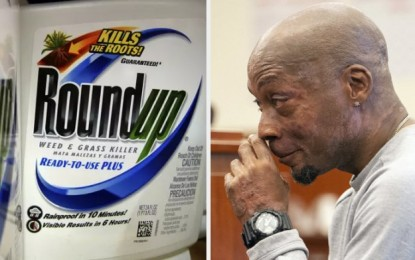 Monsanto ordered to pay $290 million to cancer patient for hiding dangers of weed killer