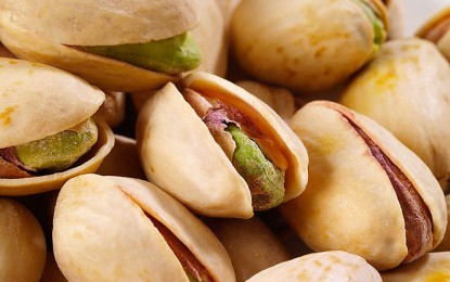 Pistachios: Discover 7 reasons to eat this delicious nut